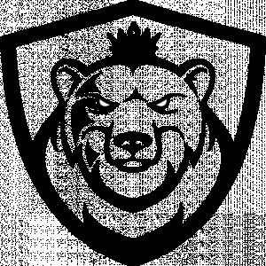 Polar Servers logo